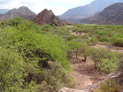 Valley in Quebrada de Cafayate