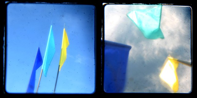 flags, diptych