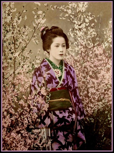 THE GEISHA | by Okinawa Soba (Rob)