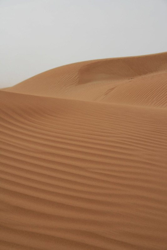 Desert 005
