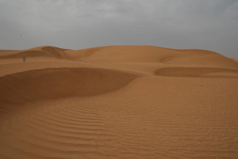 Desert 034