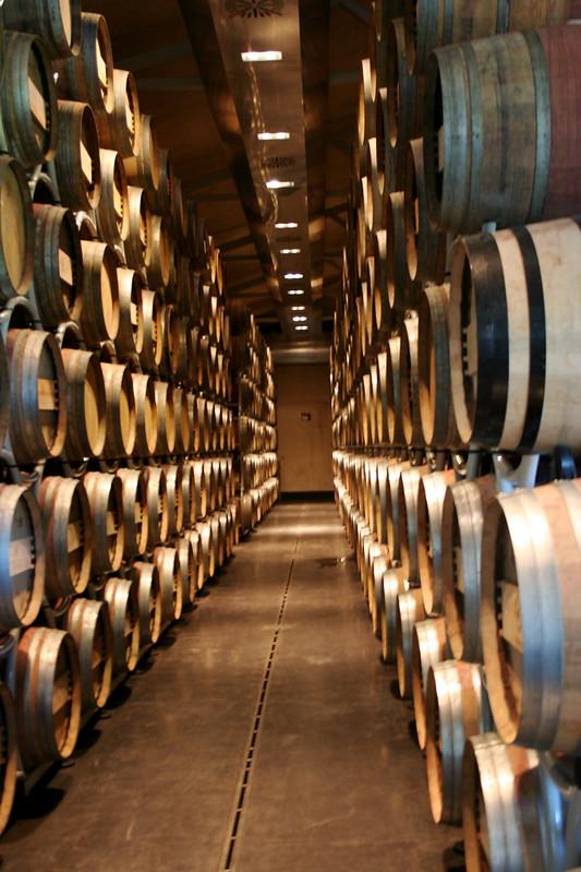 Sassicaia, Tuscany Wine Tour