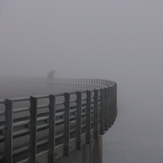 Tåkete vær -|- Foggy weather