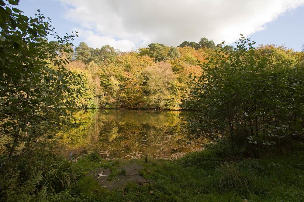 Mill Pond, Friday Street