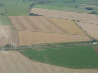 fields selection 024