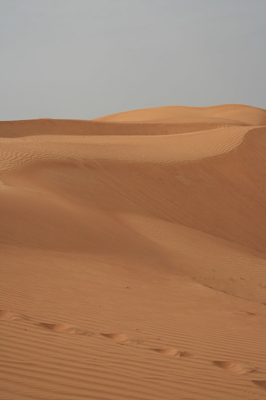Desert 004