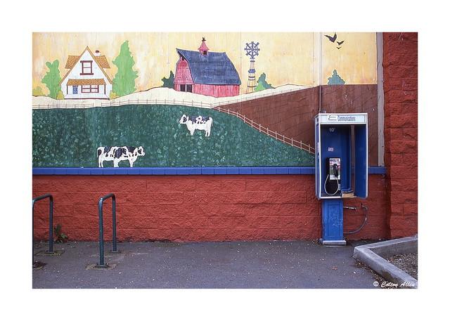 Tark's Market Mural