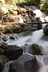 Waterfall at Eden Project, Cornwall | by davesandford