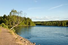 Älvdalen 2   by Eike Bernhardt