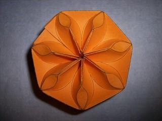 Seven in Orange