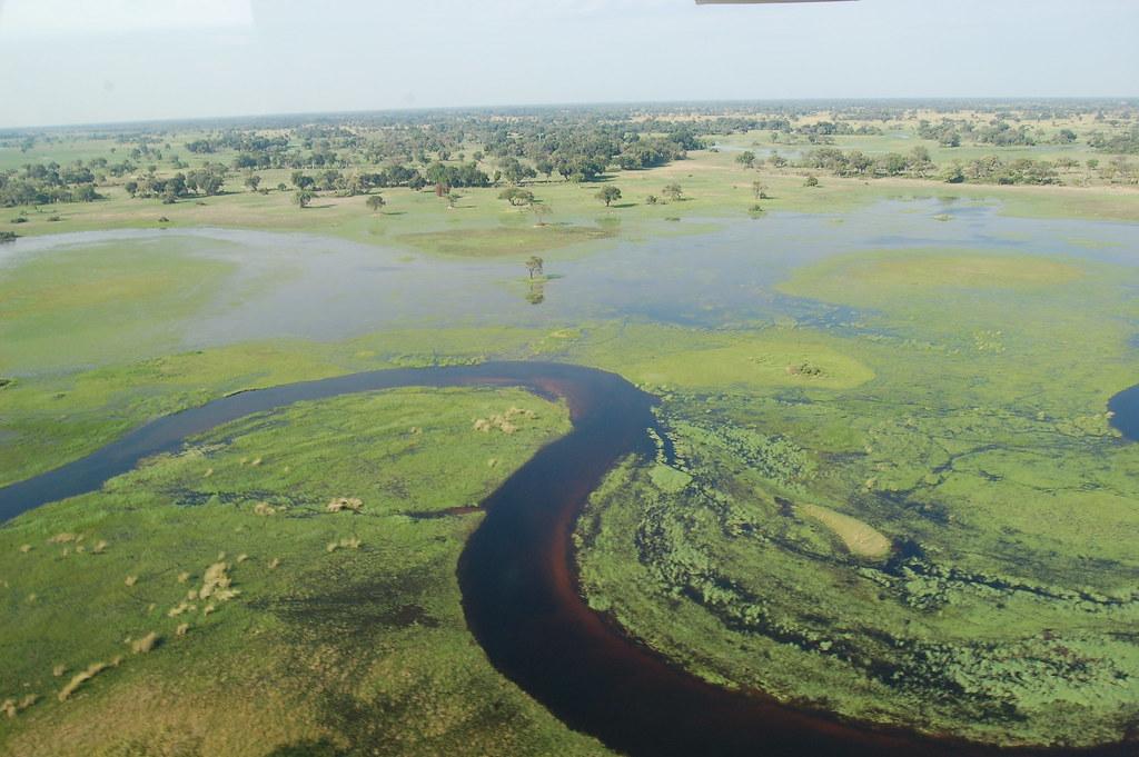 السياحة في بوتسوانا، إفريقيا