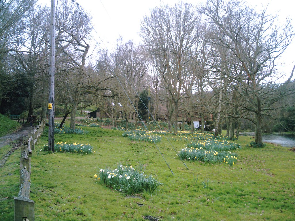Pulborough Circular walk Spring at last! D.Allen vivitar 5199mp