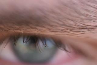 Eyebrow and eyelashes | by quinn.anya