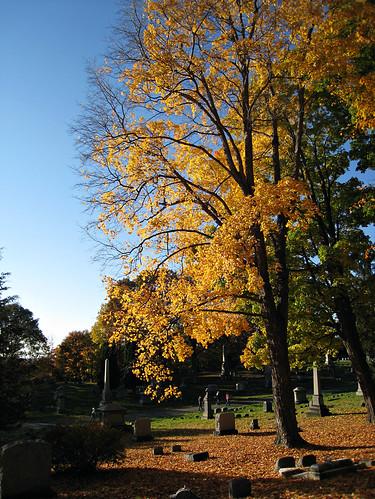 Oakwood Cemetery - Troy, NY - 15 | by sebastien.barre