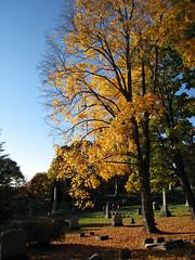 Oakwood Cemetery - Troy, NY - 15 by sebastien.barre