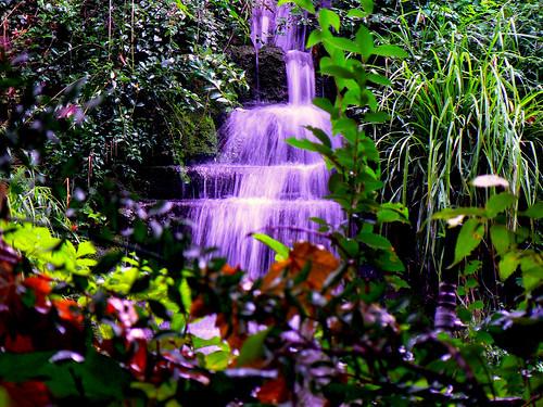 Cascada en el Bosque de la Alhambra