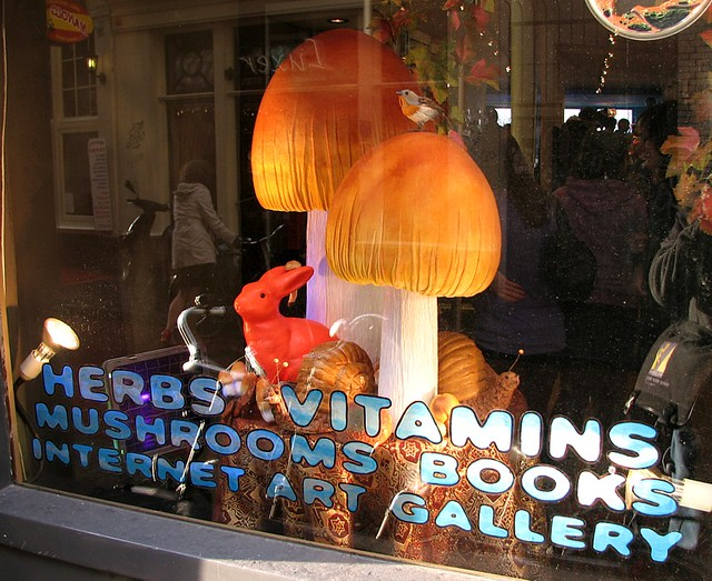 One-stop shopping in Amsterdam (Kokopelli smartshop, Nov