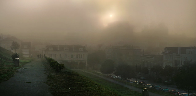 fog at Alta Plaza, morning.  San Francisco (2010)
