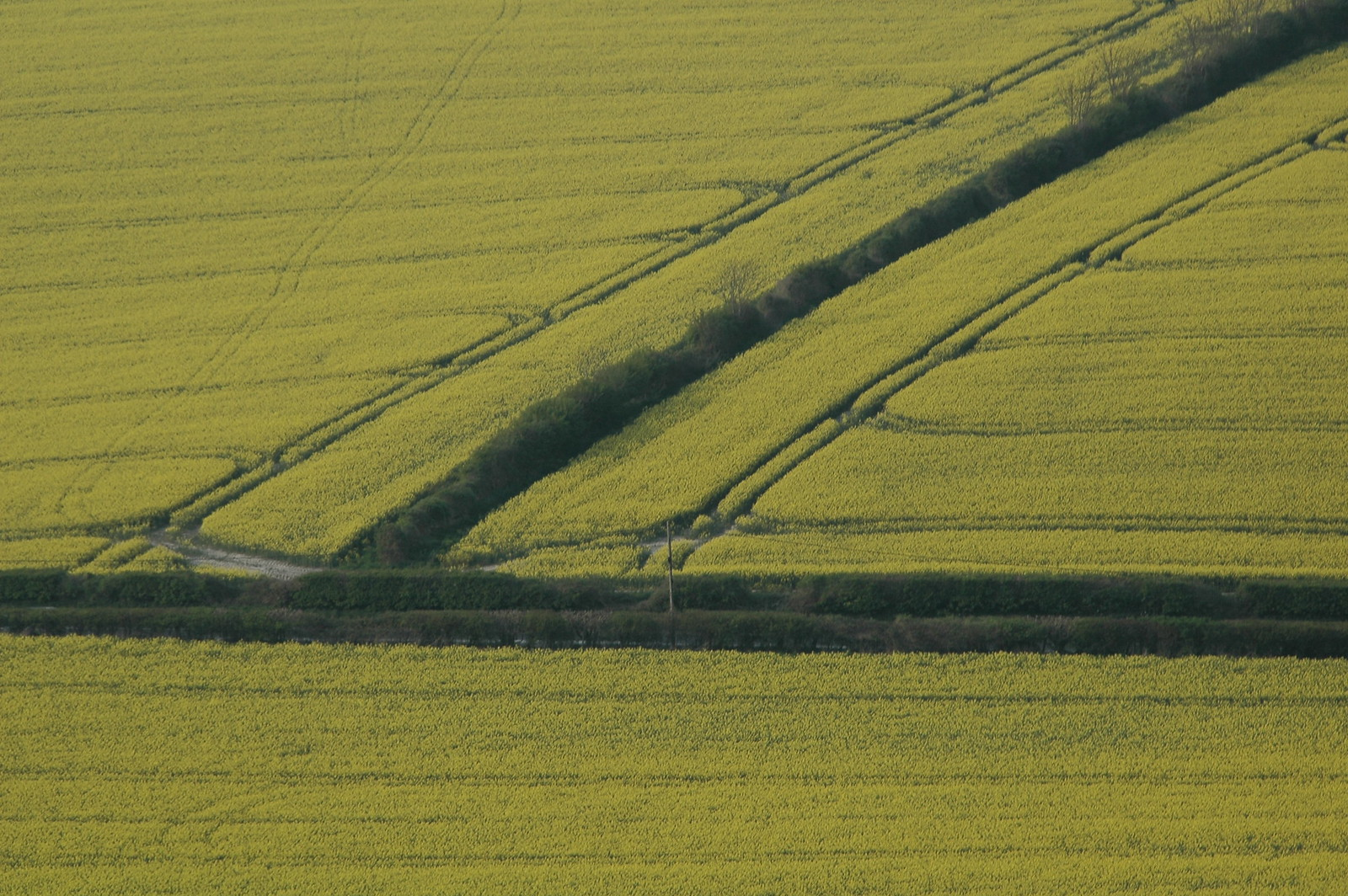 Billinghurst to Amberley Field patterns