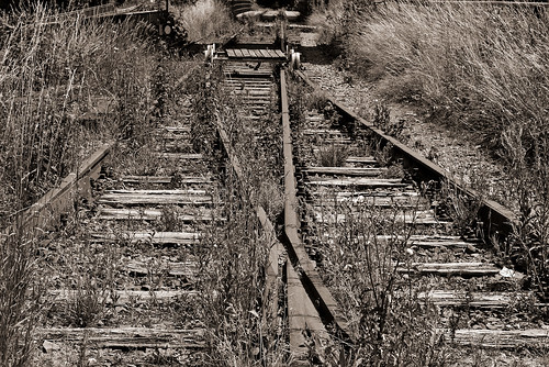Tracks | by diarnst