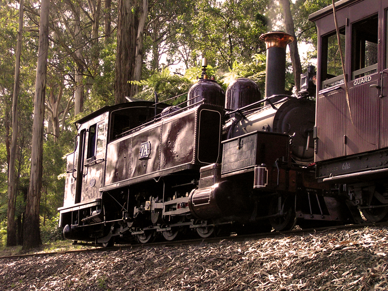 Puffing Billy by michaelgreenhill