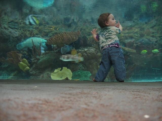 Zoe at the Aquarium