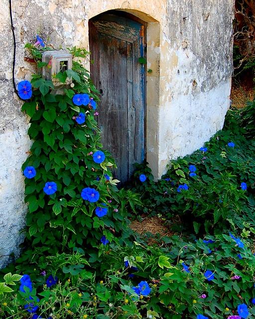 Cretan Blue