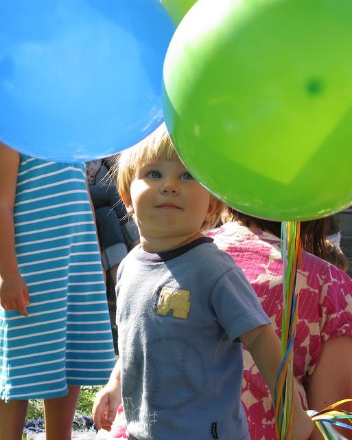 Milo Adoring the Balloons