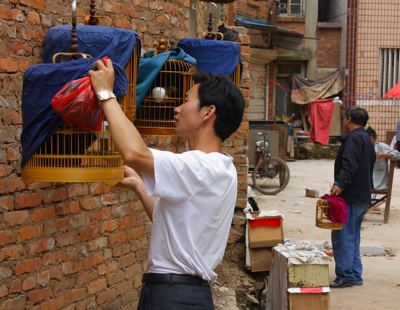 Kunming, 08/08/2009