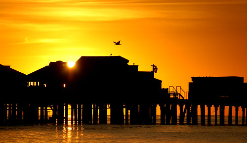 sunriise santabarbara california silhouette pier stearnswharf sunrise clear day free creativecommons