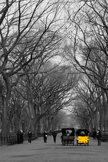 Central Park - Black and White and a little color