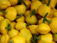 Green Market Acorn Squash