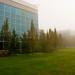 Foggy Morning - Sept 26 2008