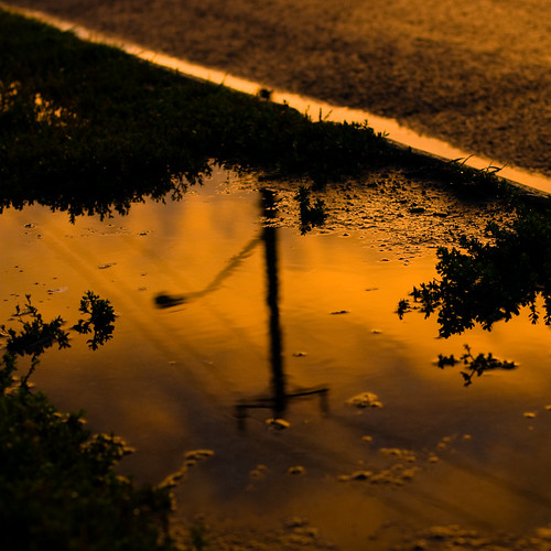 sunset reflection rain cake canon afternoon saturday sidewalk waterloo after canonef50mmf14usm 50mmprime explored canondigitalrebelxsi