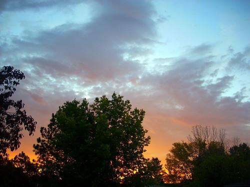 pink blue trees sky orange clouds sunrise purple