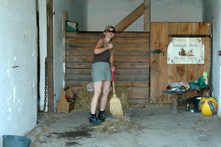 at work in the stable   by PapeMartin