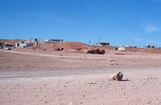 Coober Pedy Opal Miners Dug Outs 1973 South Australia