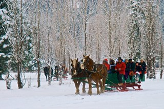 Sleigh Ride | by tswartz