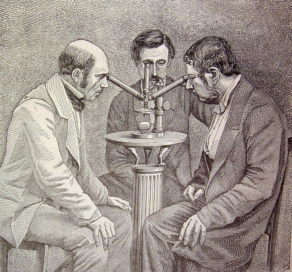 'Microscopio de tres cuerpos para las observaciones simultáneas'.