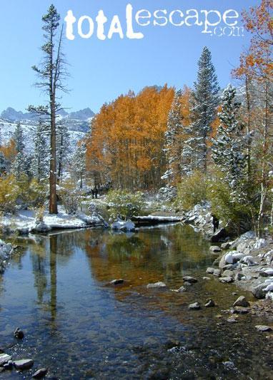 South Fork Bishop Creek