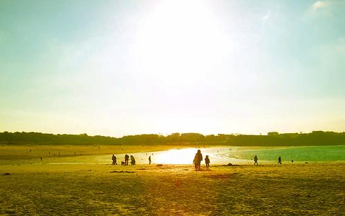 Sunny beach Tourist agency, Summer and Winter holidays in ...  Winter Sunny Beach
