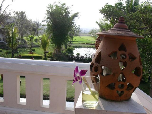 Laos, Luang Prabang, Begrüßung mit Orchidee im Coctail
