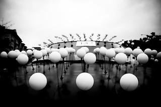 Ping Pongs
