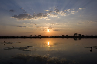 Sunset on the hippo pool | by indii.org / Lawrence Murray