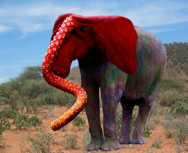 Red Head Elephant manipulation
