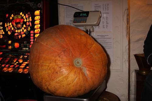 Pumpkin Weigh 2008 018