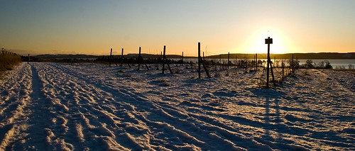 winter snow sunrise river landscape scotland rivertay tay raspberry tayside scri perthandkinross invergowrie rnbtay