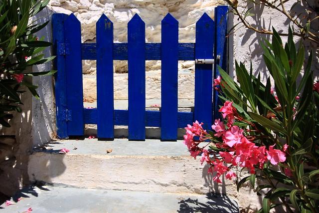 Blue gate and pink oleander