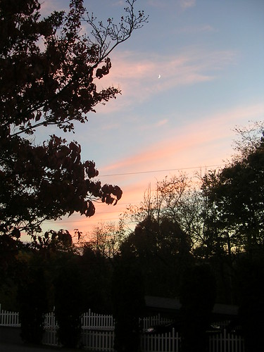 sunset moon fall asheville dusk