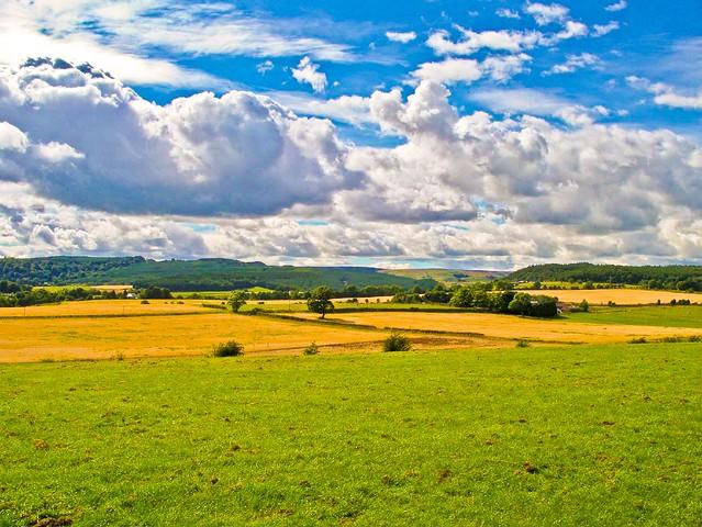 Bannockburn Revisited